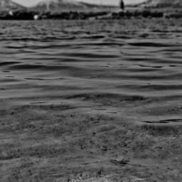 freetoedit blackandwhite sea seaside