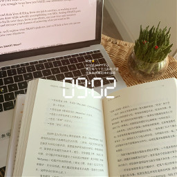 日常碎片 daily 书 reading morning sunshine freetoedit
